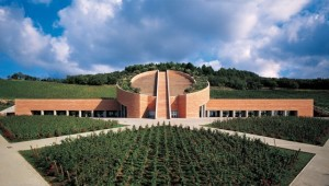 New Art & Wine in Tuscany - vino e architetture