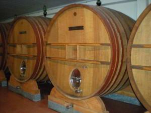 vino - esposizione